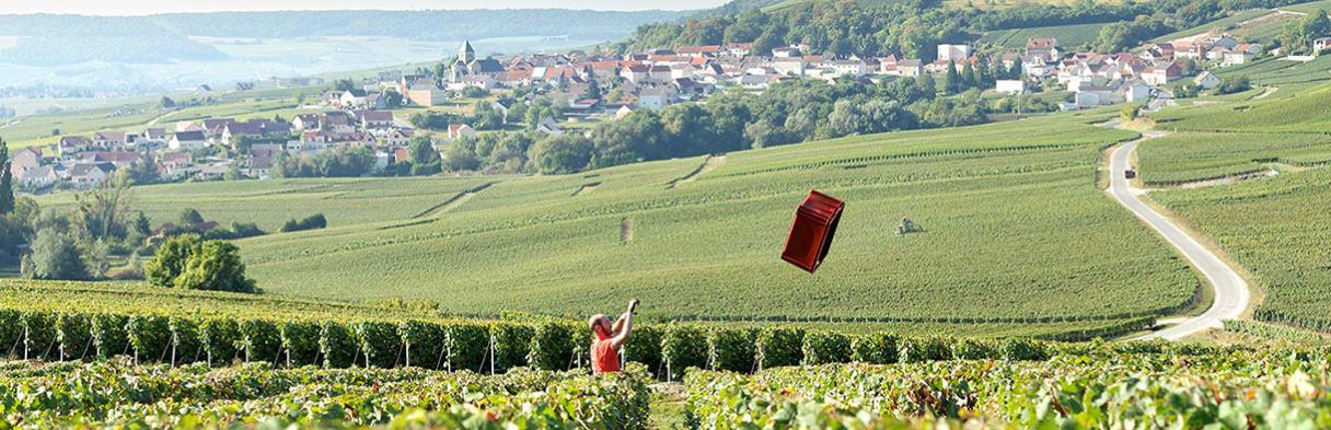 Champagne Philippe Gamet Weingärten mit Winzer bei der Arbeit