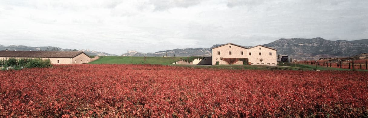 La Rioja Alta Weingut & Weinreben im Herbst