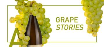 Grande Chardonnay