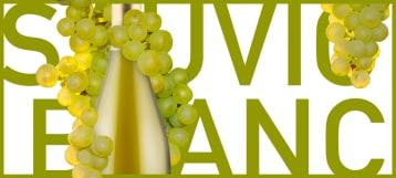 Planet Sauvignon Blanc