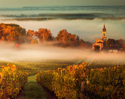 Bordeaux Landschaft