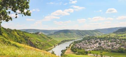 Vins du Palatinat