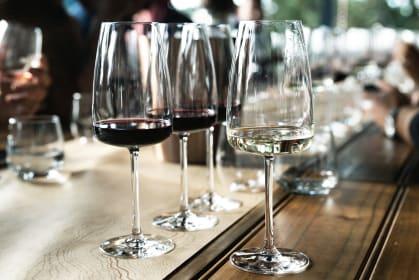 John Platter Wein-Verkostung Südafrika Gläser