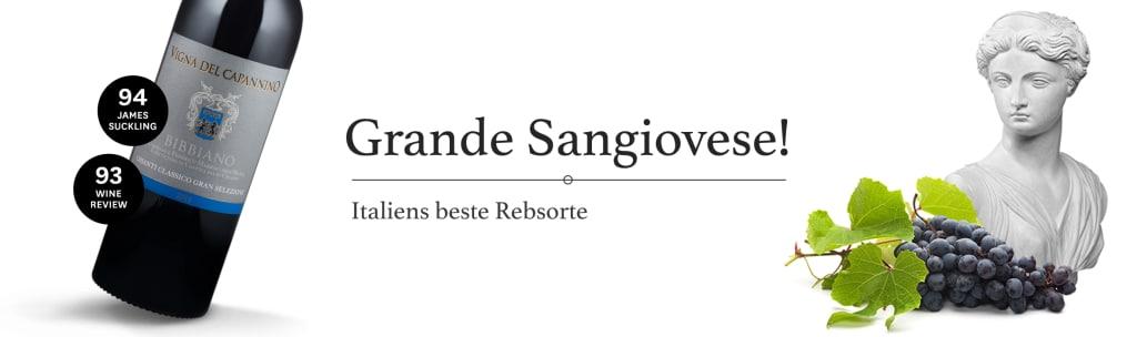 4 x Outstanding für Chianti Classico Gran Selezione