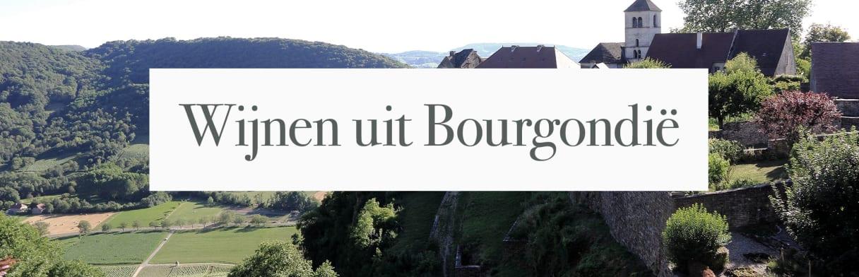 Wijnen uit de Bourgogne