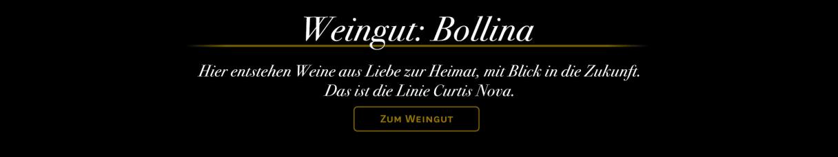 Weingut Bollina