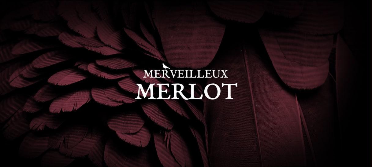 Les vins issus du Merlot