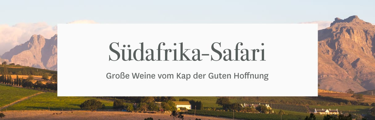 Südafrika-Safari bei Wine in Black