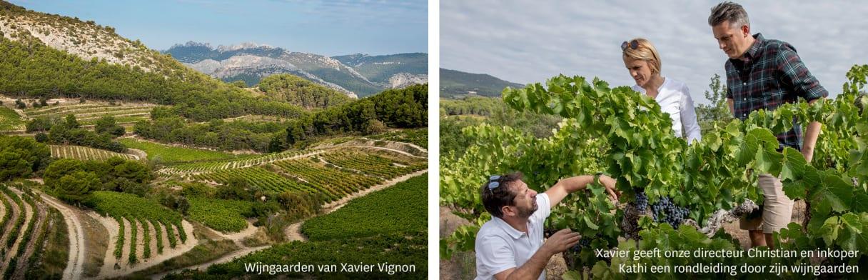 Xavier Vignon Wijngoed