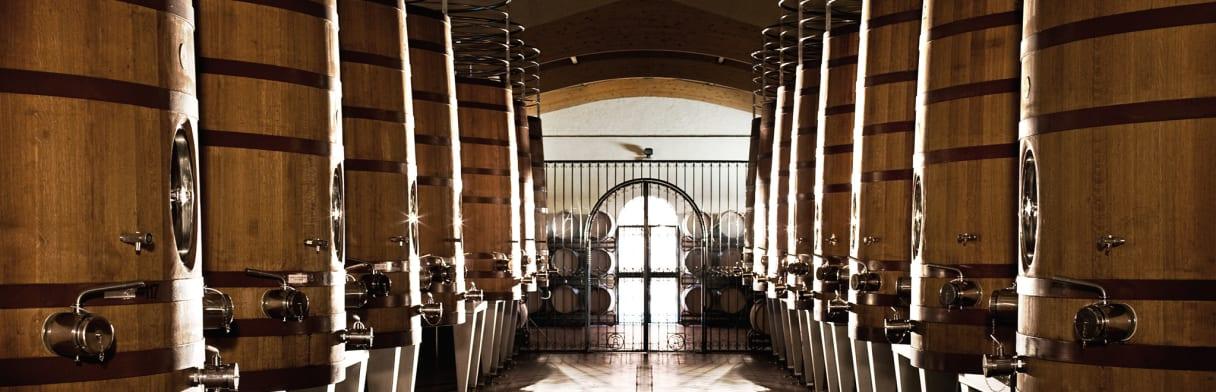 Een blik in de imposante wijnkelder van de Bodega