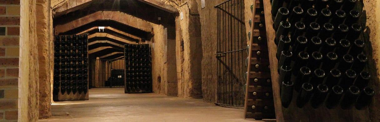 Brede gang in Baron Albert's champagnekelder
