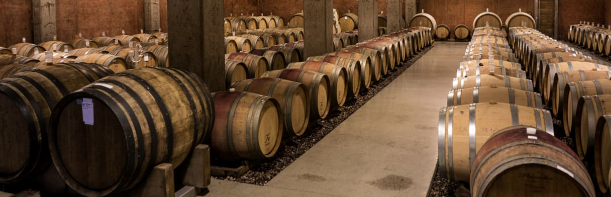Een blik in de wijnkelder