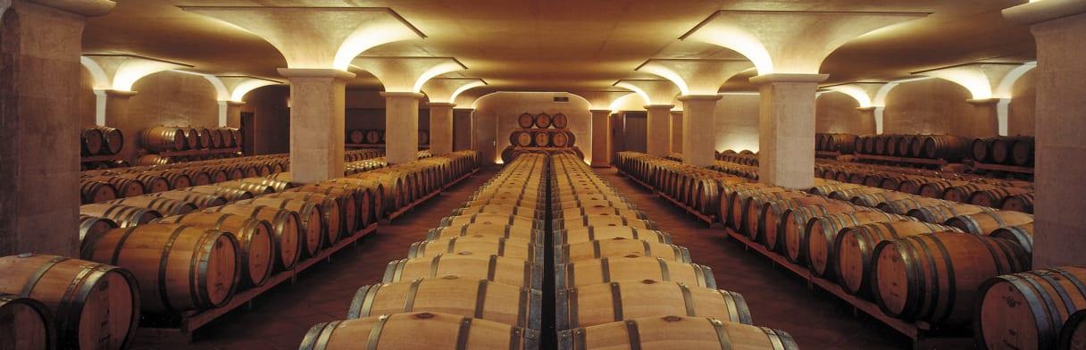Uitzicht op de indrukwekkende wijnkelder