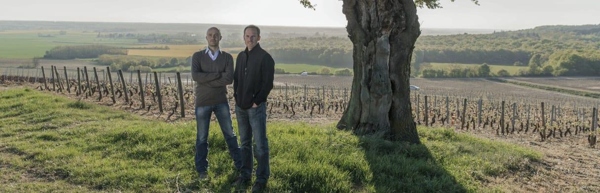 Vignerons Domaine Faiveley
