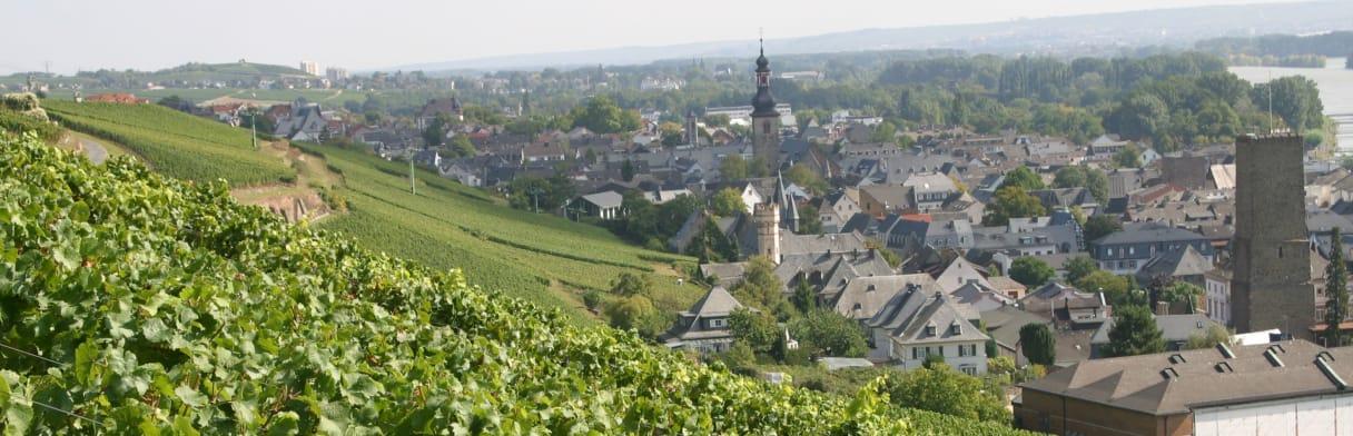 Domaine Leitz