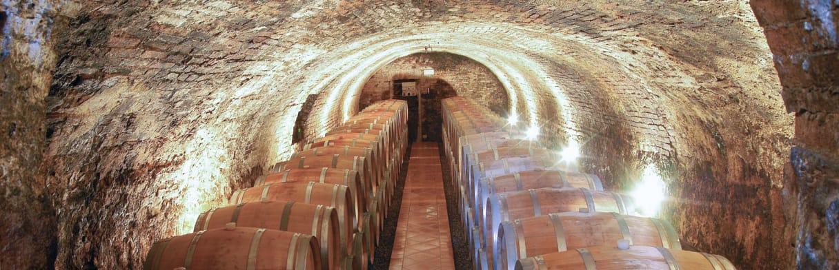 Cave Tenute Silvio Nardi