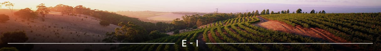 Wijngoederen E-I