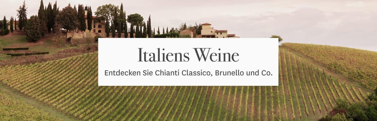 Italien Wein Reben