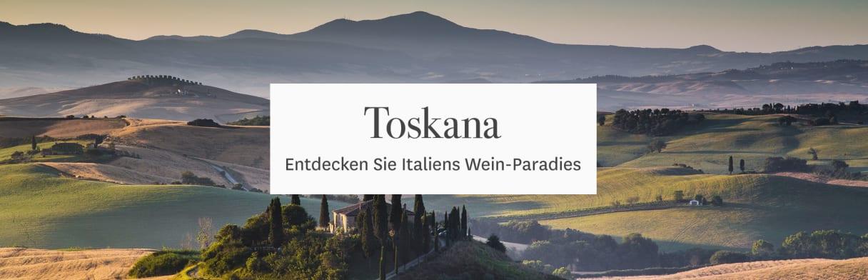 Toskana Landschaft Weingüter