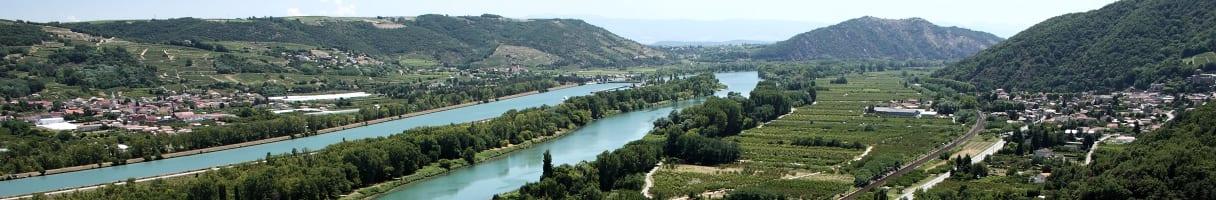 Weinberg in der Rhône