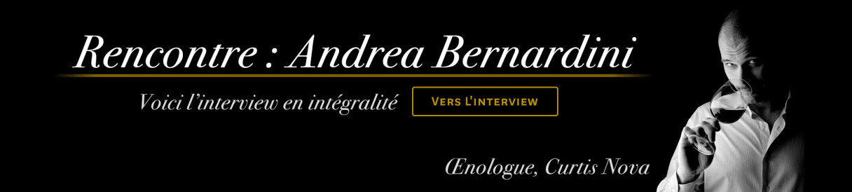 Interview Andrea Bernardini