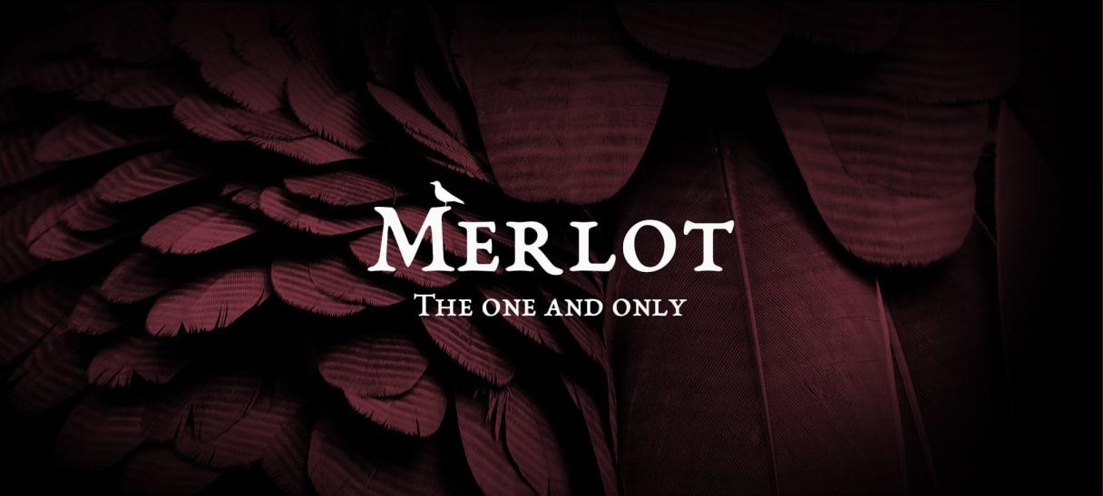 Merlot Weine bei Wine in Black