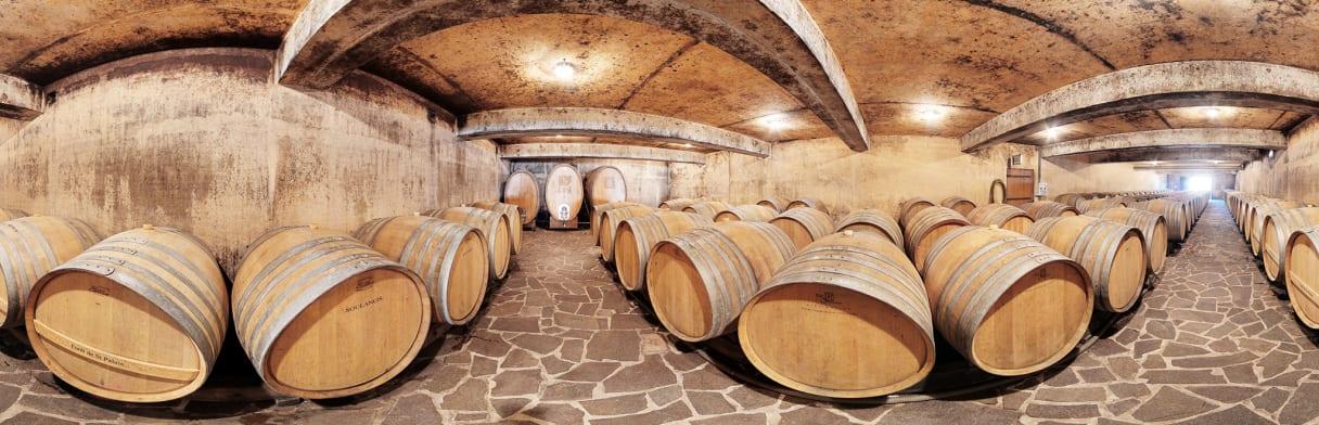 360-Grad-Ansicht vom Weinkeller der Domaine Gitton