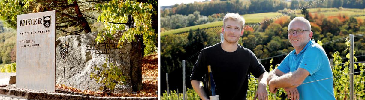 Collage: Eingangsschild vom Weingut Meier, Vater und Sohn Meier im sonnigen Weinberg