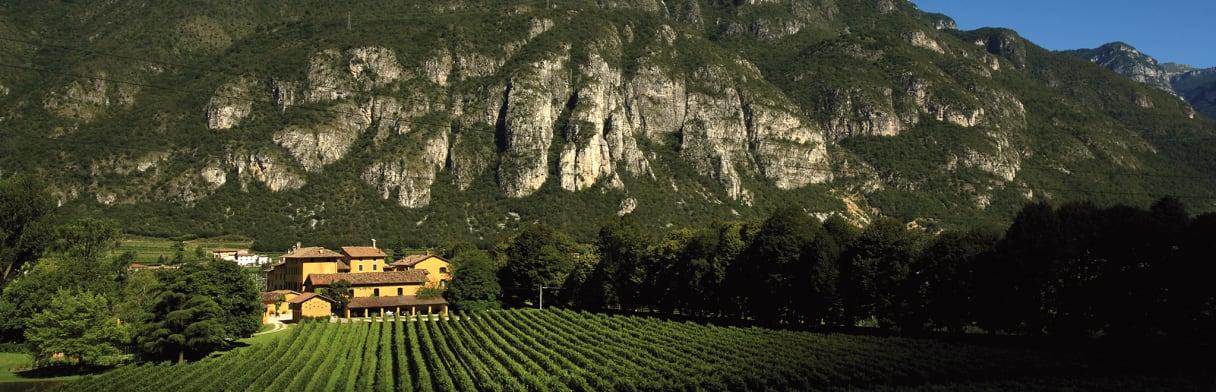 Tenuta San Leonardo met op de achtergrond een berg