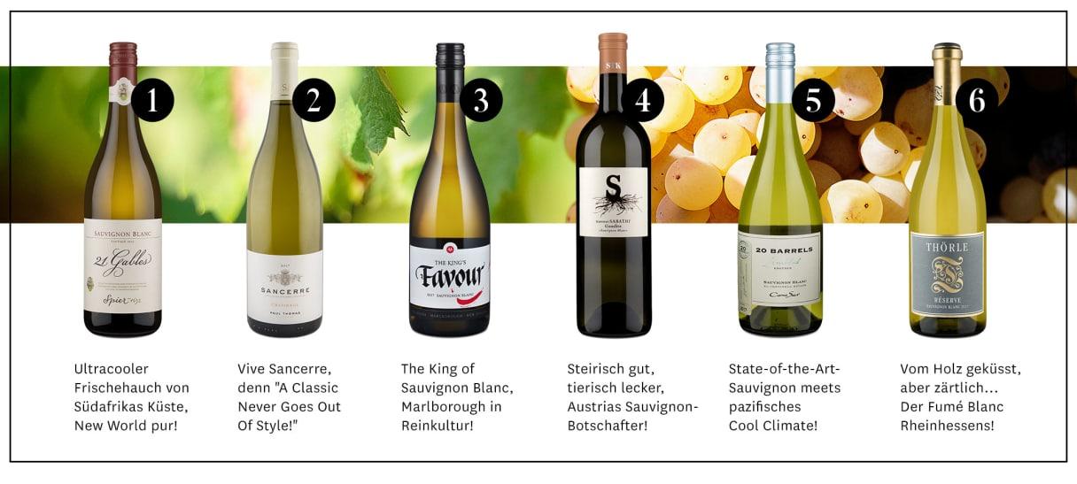Feintrinker, die Tasting Community von Wine in Black, Sauvignon Blanc