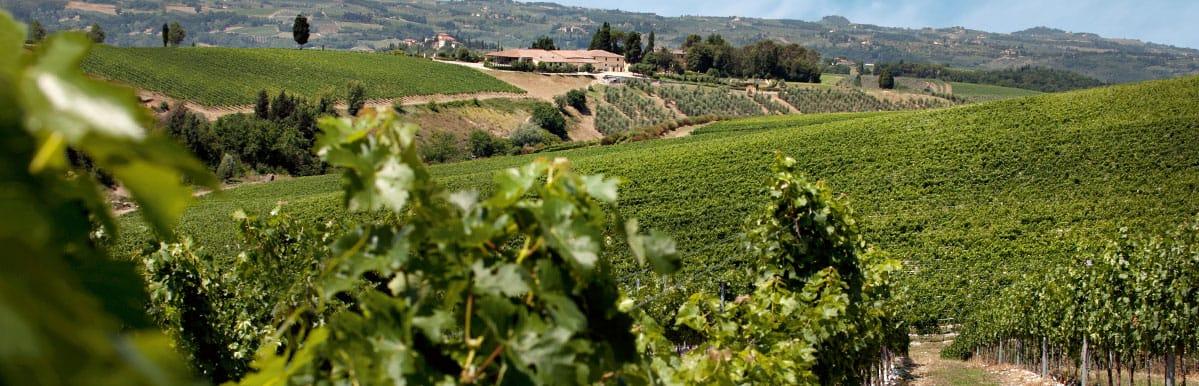 Antinori Weingut