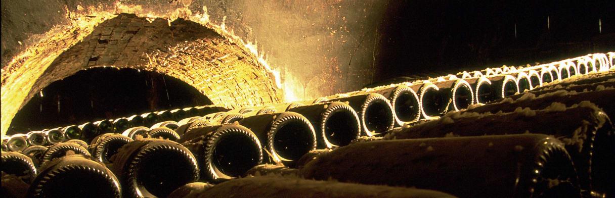 Champagne Bollinger Wijngoed