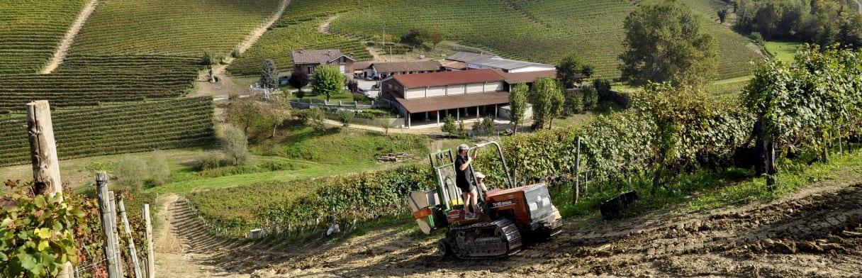 Azienda Agricola Ca'del Baio Weingut