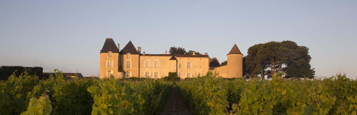 Château d'Yquem Weingut