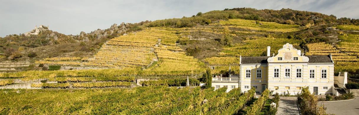 Domäne Wachau Wijngoed
