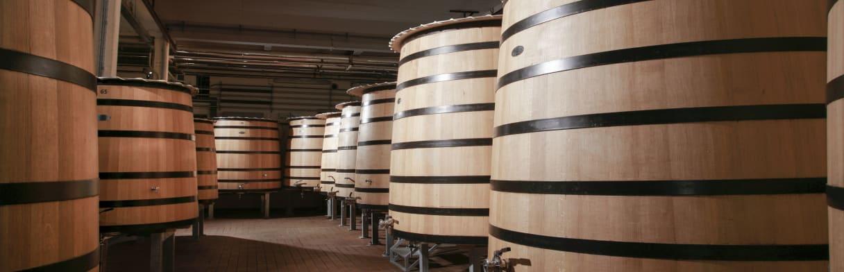 Domaine Faiveley Wijngoed