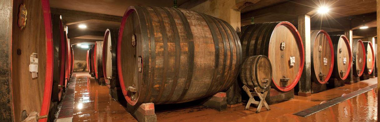 Castelli di Grevepesa - Weinkeller mit großen Eichenfässern