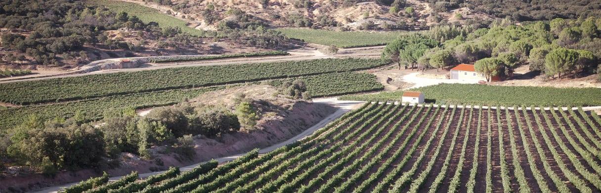 Landschaft und Dorfansicht in der Umgebung von Bodegas J.A. Calvo Casajús