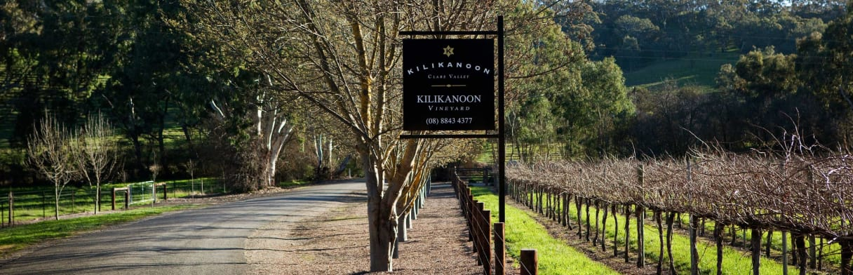 Kilikanoon Wines Weingut