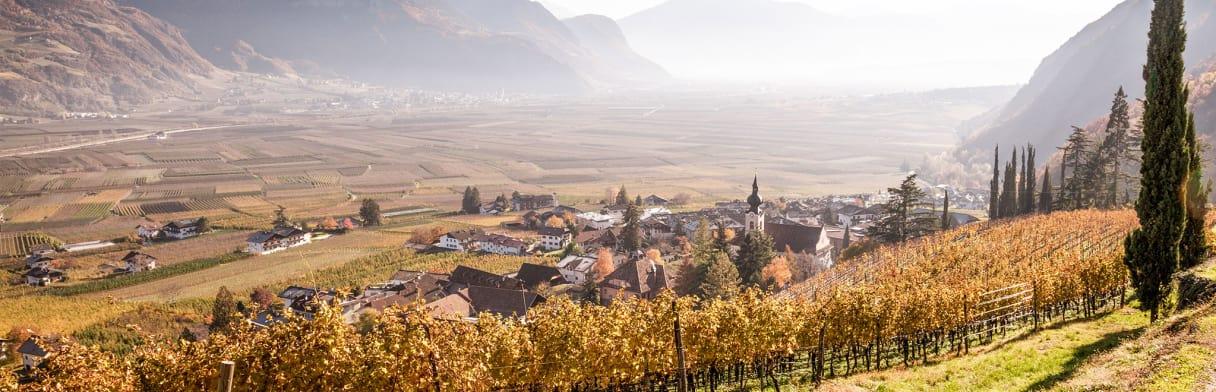 Nals Margreid - Weinreben und Ortsansicht im Herbst
