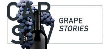 Red grape stories