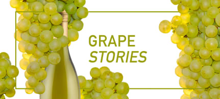 White Grape Stories