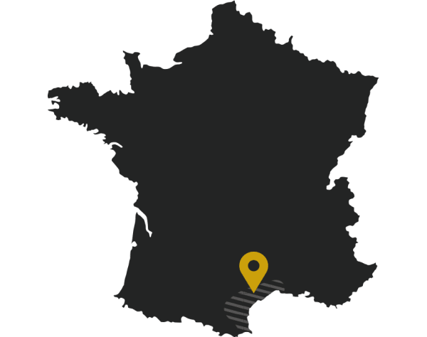 Le domaine Château Puech-Haut du Languedoc
