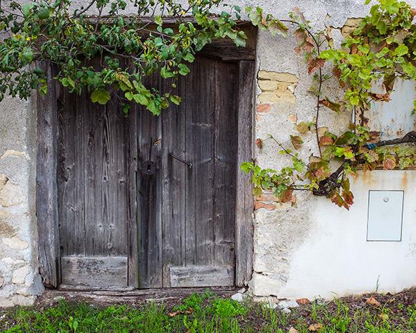 Burgenland - Weingut Glatzer