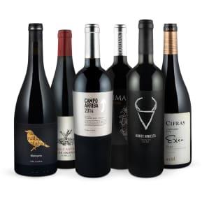 Wine in Black 'Outstanding Spanien Best-Buy-Set'