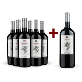 Offre '6 bouteilles' Cantine Lento 'Dragone' Calabria 2015 + magnum offert