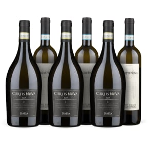Wine in Black 3+3 'Curtis Nova Pinot Grigio & Gavi'-Set