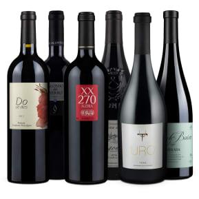 Wine in Black '93+Punkte Best of Parker'-Set