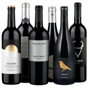 Wine in Black 'Vinos Ibéricos' pakket