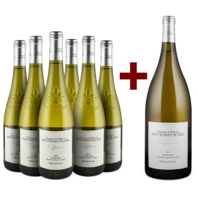 Offre Domaine de Bellevue Sauvignon Blanc 'Tuffeau' Touraine 2018 6 bt.+1 magnum offert
